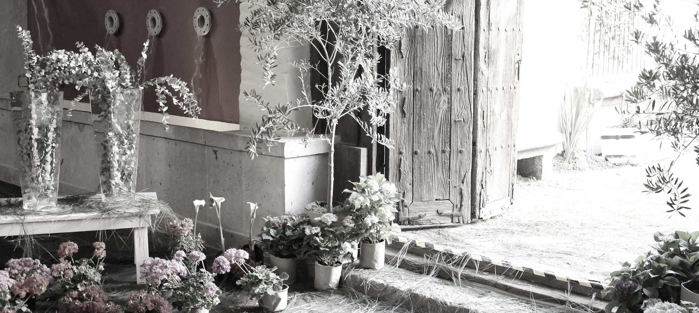 bodas-casa-xalisco-3